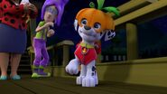 PAW.Patrol.S01E12.Pups.and.the.Ghost.Pirate.720p.WEBRip.x264.AAC 1240673