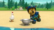 PAW Patrol Pups Save a Goldrush Scene 14