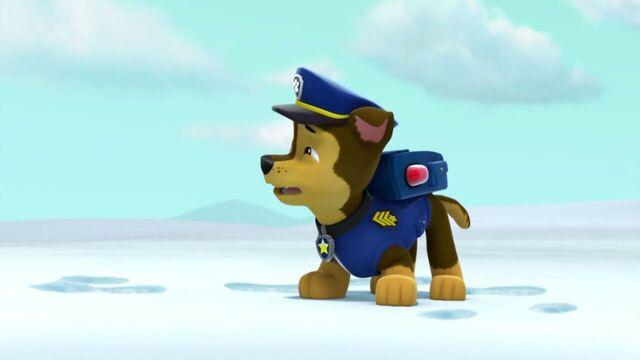 File:PAW.Patrol.S02E07.The.New.Pup.720p.WEBRip.x264.AAC 851284.jpg