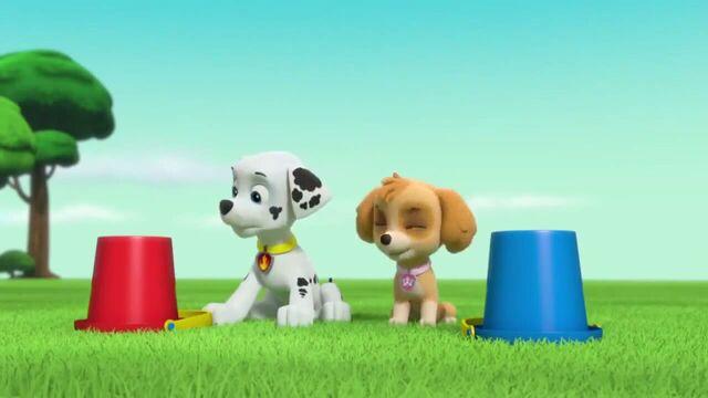 File:PAW Patrol Season 2 Episode 10 Pups Save a Talent Show - Pups Save the Corn Roast 88956.jpg