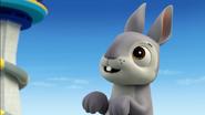 Bunnies (Bunnies)2