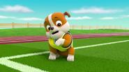 Pups Soccer 51