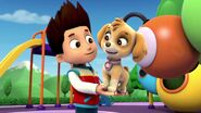 PAW.Patrol.S01E15.Pups.Make.a.Splash.-.Pups.Fall.Festival.720p.WEBRip.x264.AAC 676476
