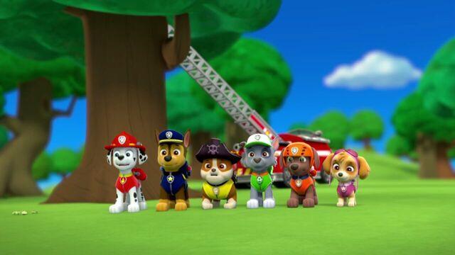 File:PAW.Patrol.S01E26.Pups.and.the.Pirate.Treasure.720p.WEBRip.x264.AAC 1031564.jpg