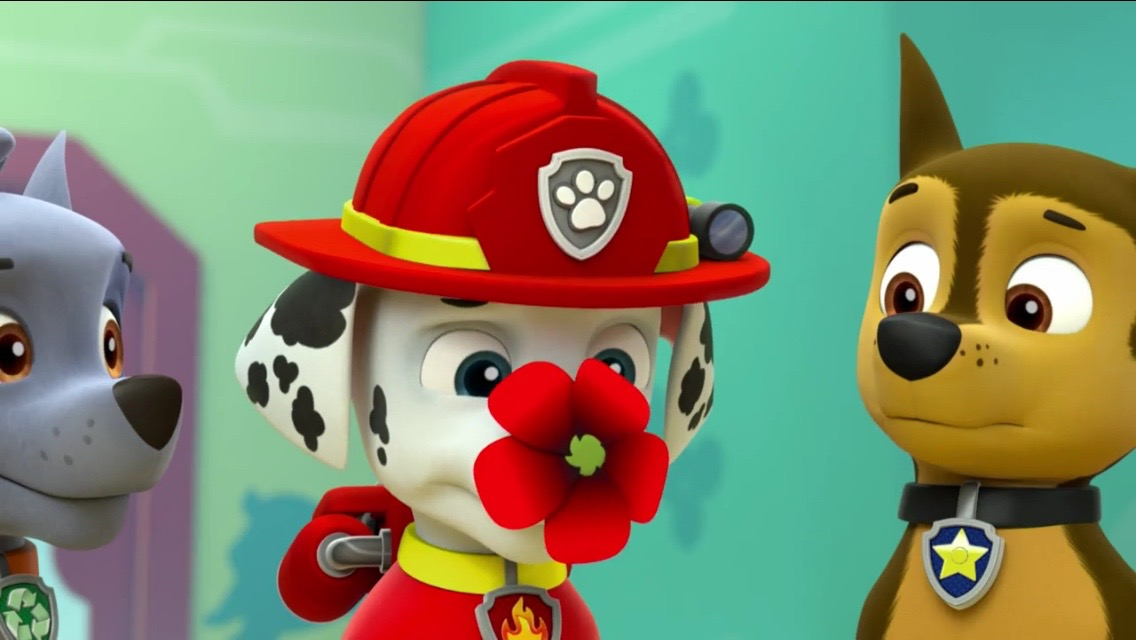 RockyGalleryPups Save the Songbirds PAW Patrol Wiki