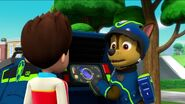 PAW Patrol Pups Save the Songbirds Scene 27