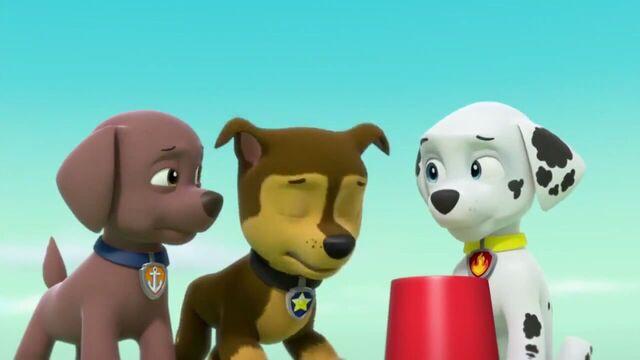 File:PAW Patrol Season 2 Episode 10 Pups Save a Talent Show - Pups Save the Corn Roast 129796.jpg