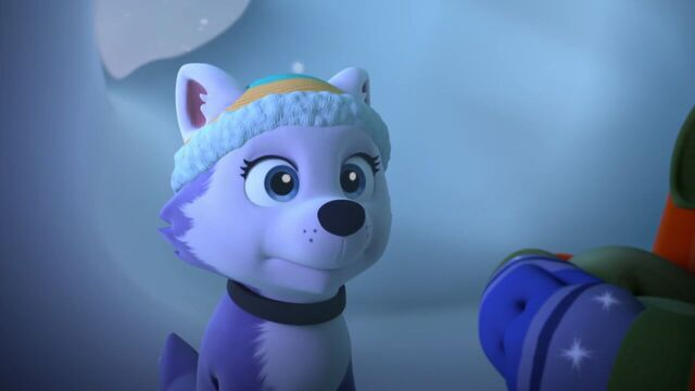 File:PAW.Patrol.S02E07.The.New.Pup.720p.WEBRip.x264.AAC 574574.jpg