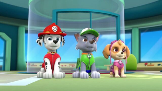 File:PAW.Patrol.S01E26.Pups.and.the.Pirate.Treasure.720p.WEBRip.x264.AAC 592158.jpg