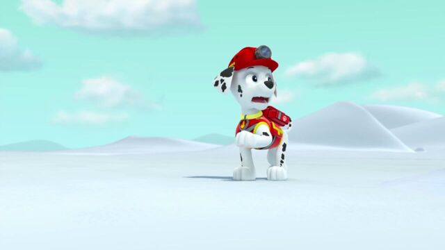 File:PAW.Patrol.S02E07.The.New.Pup.720p.WEBRip.x264.AAC 784884.jpg