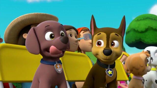 File:PAW Patrol Season 2 Episode 10 Pups Save a Talent Show - Pups Save the Corn Roast 572472.jpg