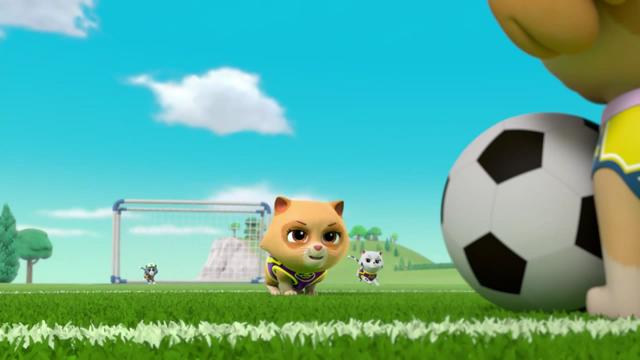 File:Pups Soccer 20.png
