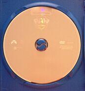 Disc itself