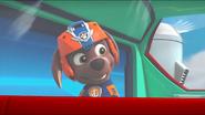PAW Patrol Air Pups Zuma