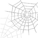 Pat-webbed