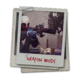 Hint weapon mods