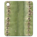 Mat-cactus