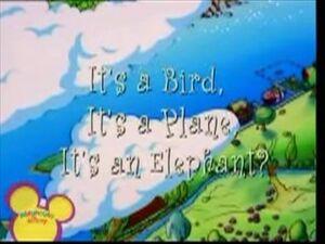 It's a Bird It's a Plane It's an Elephant