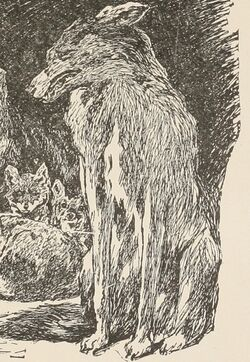 Fatherwolf