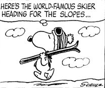 World Famous Skier