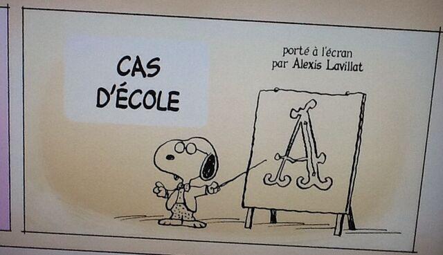 File:Casdecole.jpg