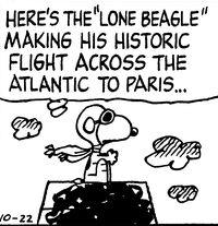 Lone Beagle