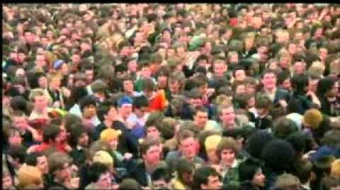 John Peel's All Time Festive Fifty - 1981