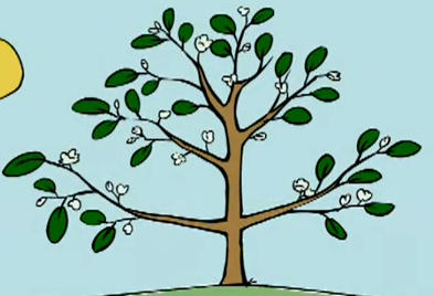 File:Peep's favourite tree in bloom.png