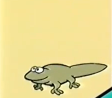 File:Time newt.PNG