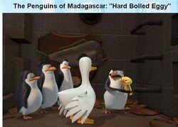 Hard-Boiled-Eggy-001