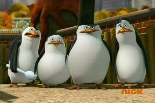 File:Erm-What-penguins-of-madagascar-16992017-525-351.jpg