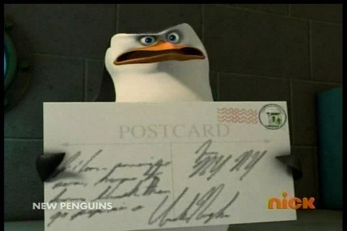 File:What-Does-the-Postcard-Say-penguins-of-madagascar-23735514-500-333.jpg