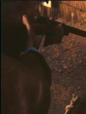 File:Poacher-2.JPG