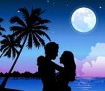 Lovers paradise island stars water trees ocean-hd-wallpaper-497997