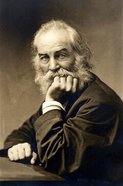 Whitman at about fifty