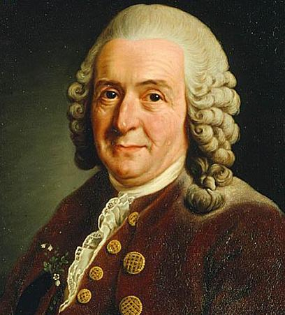 the historical context of carl linnaeus method of classification This framework behind linnaean classification is still  understanding we can  also track our evolutionary history by using classification systems carl linnaeus.