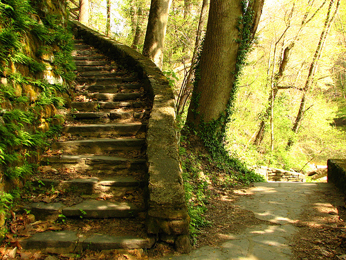 File:Stair in Fairmount Park.jpg