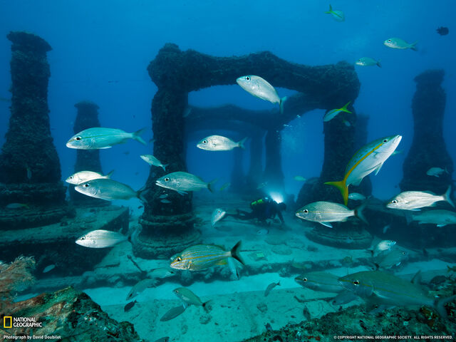 File:Port Royal ruins underwater.jpg