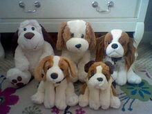 Dogs Family-1480197229