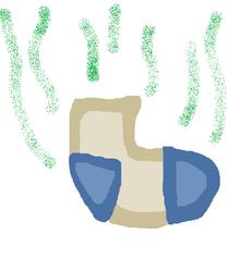 Tobias sock