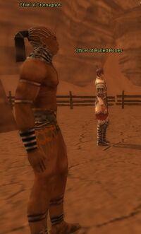 Cromagnon Chief