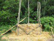 Treebog4