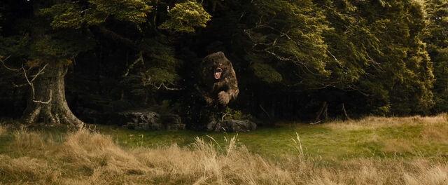 File:Beorn's bear form.jpg
