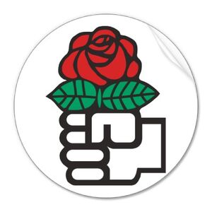 Democratic socialism the fist and rose symbol sticker-p217755465219830830q0ou 400