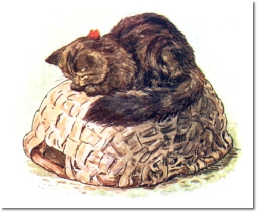 File:Gardencat.jpg