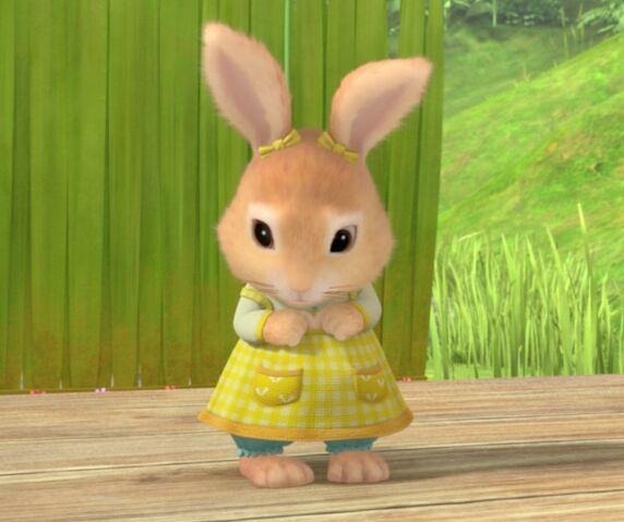 File:Shy-Little-Cotton-Tail-Rabbit.jpg