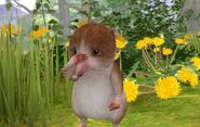 Peter-Rabbit-Shrew-Sad-Image