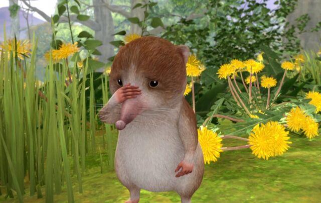 File:Peter-Rabbit-Shrew-Sad-Image.jpg