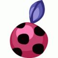 Ladybug fruit