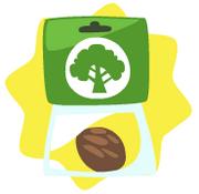 Tree-Seed